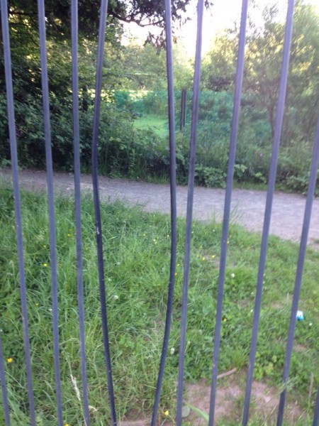 Damage to security fence to gain access to the fish pass