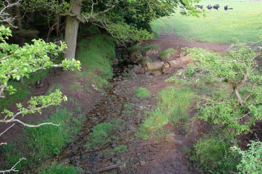The possible source of the pollution. There may be others further downstream but this point was causing silt to mobilise downstream and that's unacceptable.